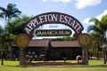 Ocho Rios to Appleton Rum Factory