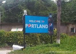 Montego bay airport to Portland port antonio Hotels