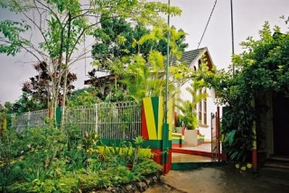 Transportation Jamaica Bob Marley Birth Place Spirit of Reggae tour