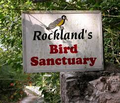 Rock land Bird sanctuary from Negril